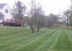 Lawn Service in Manalapan NJ 07726
