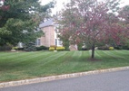 Lawn Service in Freehold NJ 07728