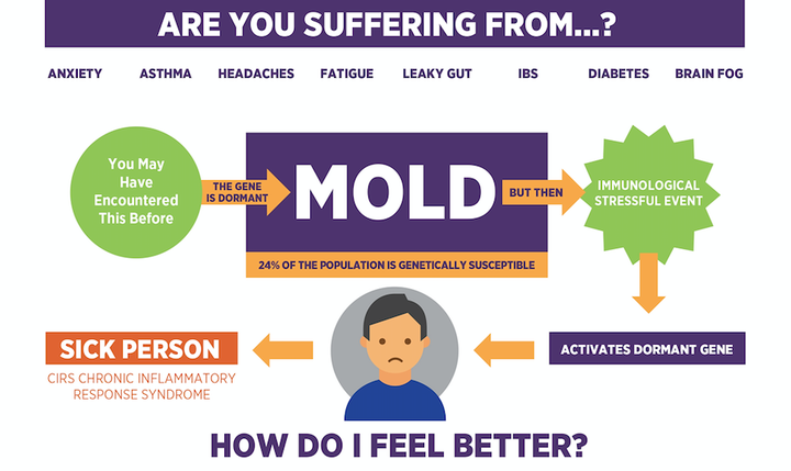 Are You Suffering From Mold Infographic