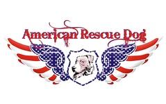American Rescue Dog
