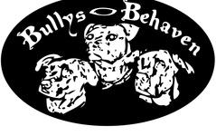 Bullys Behaven