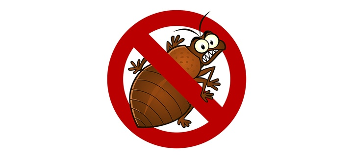 Bed Bug Heat Treatment - How to Make Bed Bugs a Thing of the Past