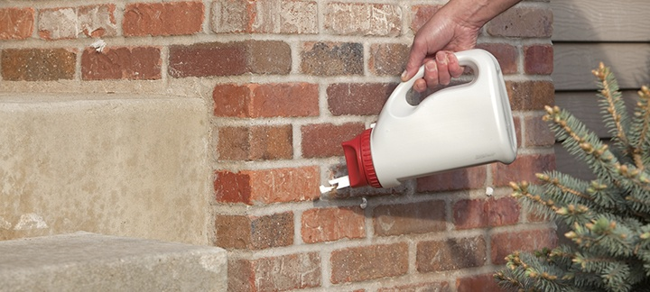 5 Pest Control Products Every Home Should Have on Hand