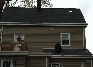 Roofing and Siding Repair in Morris County, NJ