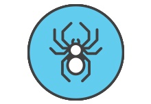 Commercial Spider Control NJ