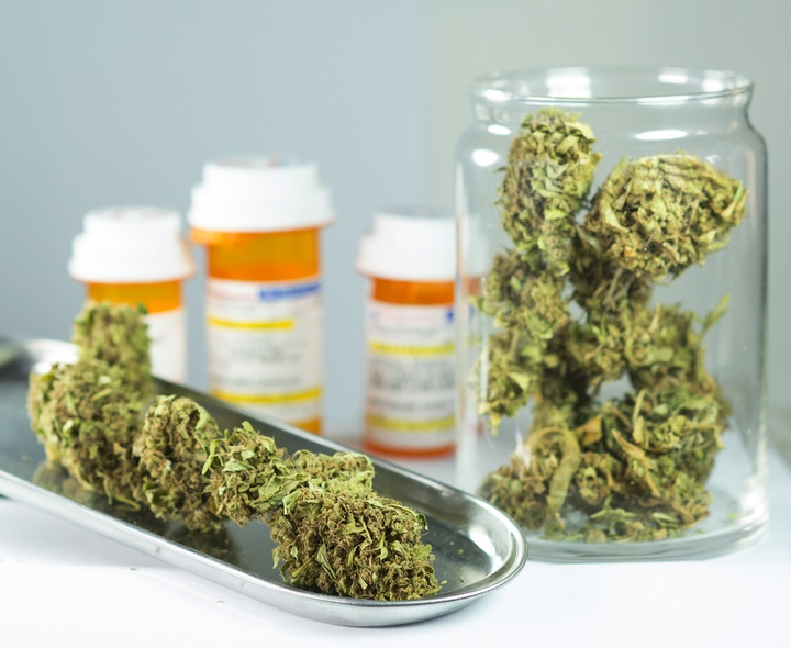 The Role of Cannabis, Cannabinoids and the Endocannabinoid System in Disorders of your Immune System – such as Cancer and Autoimmune Diseases