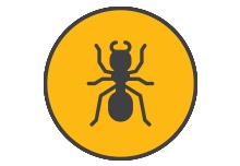 Commercial Ant Control NJ