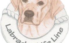 Labrador Life Line