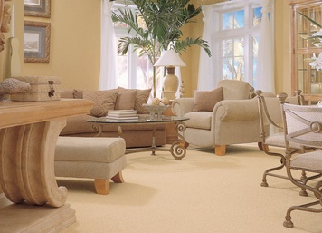 Carpet and Carpet Installation in Monmouth County
