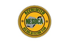 We Have The Most NESDCA Certified Teams in New Jersey!