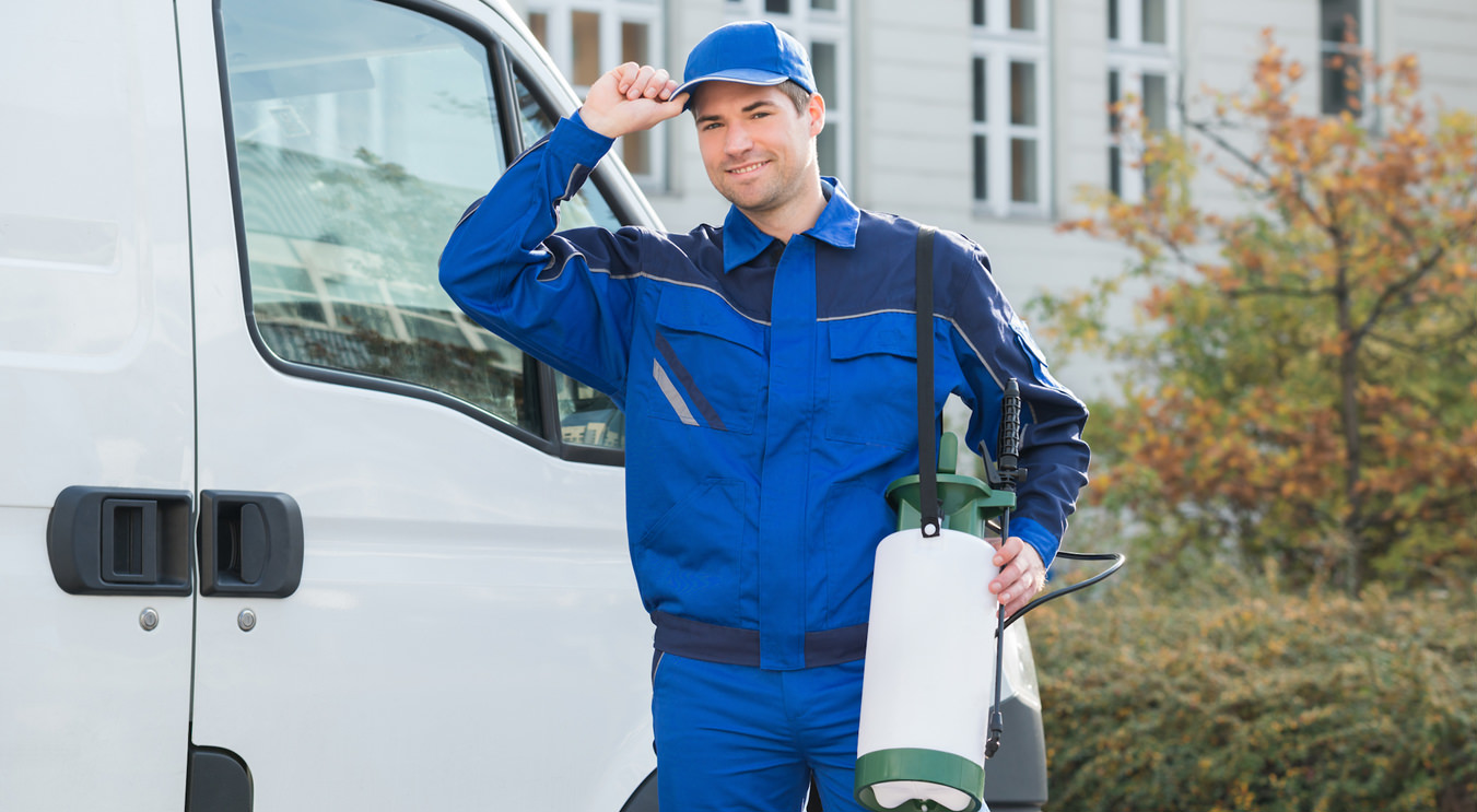 Commercial Pest Control in New Brunswick, NJ
