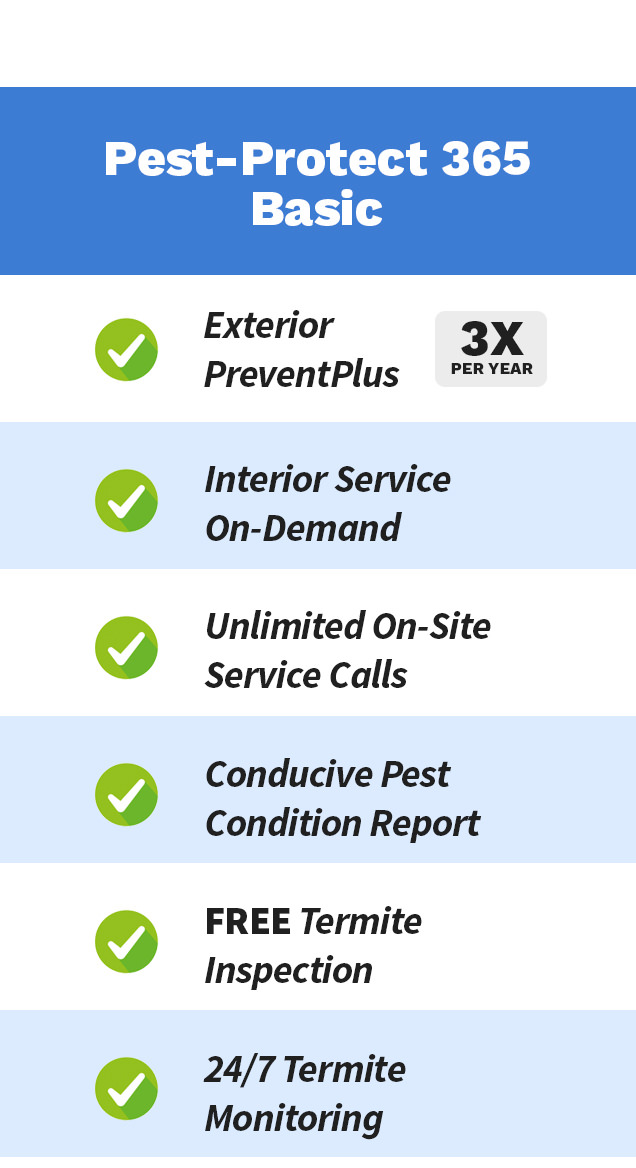 Pest Protect 1