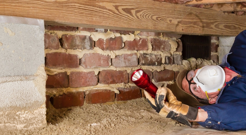 Termite Control New Jersey